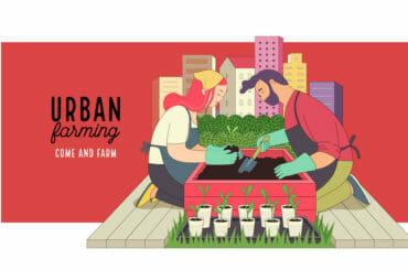 Urban Farming And Gardening image